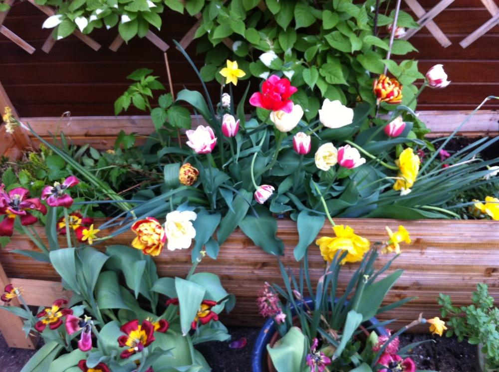 Die Küche Ruht, Der Garten Ruft